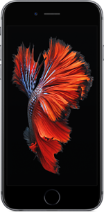 iphone6s-gray-select-2015_AV1